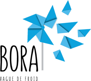 Infusion Bora Logo